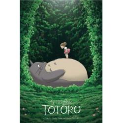 My Neigbor Totoro (R2017)