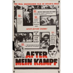 After Mein Kampf