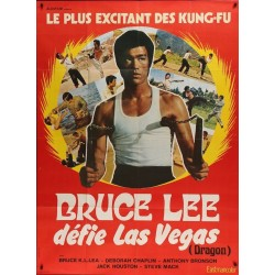 Bruce Lee Fights Back From The Grave (French)