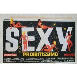 Sexy Probitissimo (Belgian)