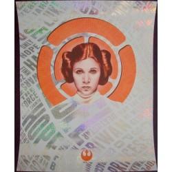 Star Wars: The Princess (R2018)