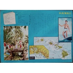 Blue Hawaii (Japanese B3)