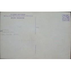BG 132: Chambers Brothers (Handbill)