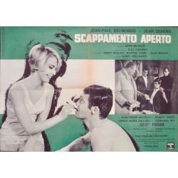 Backfire - Echappement libre (fotobusta set of 10)