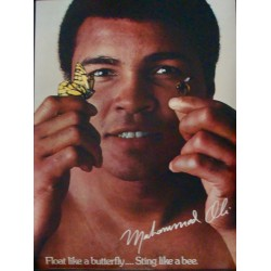 Muhammad Ali: Float Like a Butterfly Sting Like A Bee