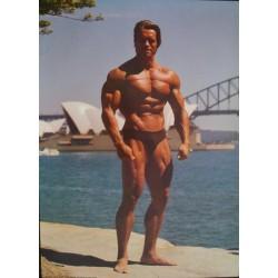 Arnold Schwarzenegger (Personality B)