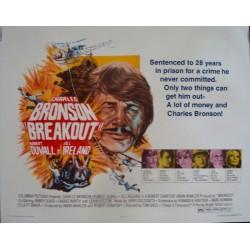 Breakout (half sheet)
