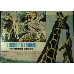 Sex and The Animals...