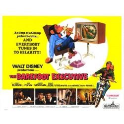 Barefoot Executive (half...