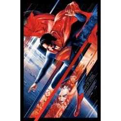 Man Of Steel (Mondo - Ansin)