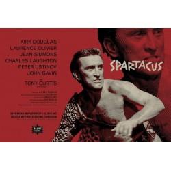 Spartacus (R2013)